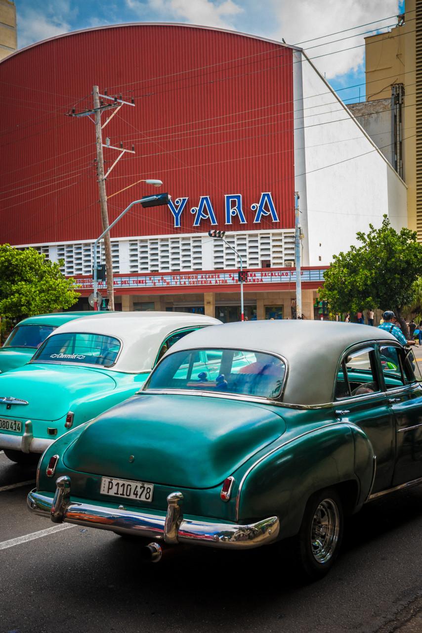 YARA-6